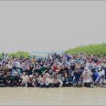 Menanam Mangrove Selamatkan Alam